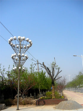 山东东营市 Dongying City,Shandong