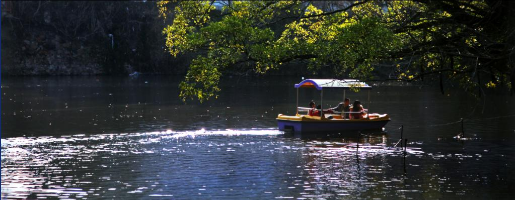 八境公园湖中游