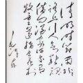 书法作品《毛泽东诗词》