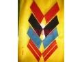 55式领章.55式大衣领章底板.陆海空