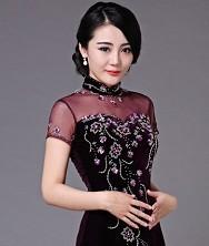 巧之韵 紫薇.中式新古典真丝绒时尚传统长旗袍 时尚礼服旗袍裙