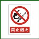 禁止标示牌 禁止烟火 标志牌 禁止吸烟 禁带火种/交通设施