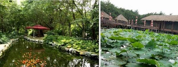 小坝美农禅生态产业园