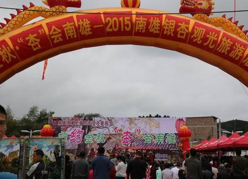 韶关南雄市2015银杏观光旅游正式启动