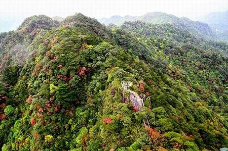 乳源南岭国家森林公园入选广东十大最美森林
