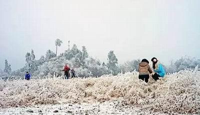 广东北部山区韶关、清远银装素裹 吸引游客上山赏雪
