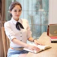 女士立领纯色职业装衬衫