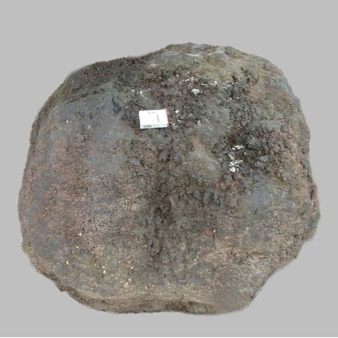 The world's largest manganese nodules(世界最大的锰结核)